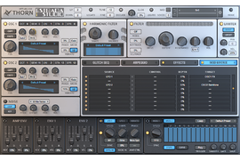 Pakiet EiS - DS Audio Software Thorn EiS
